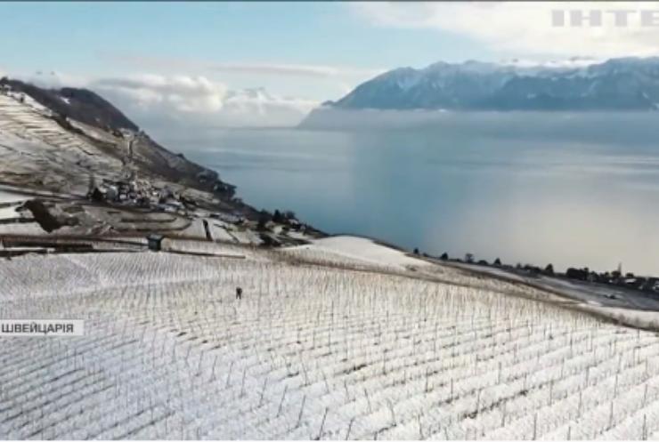 У Швейцарії сніг укрив знамениті виноградники Лаво