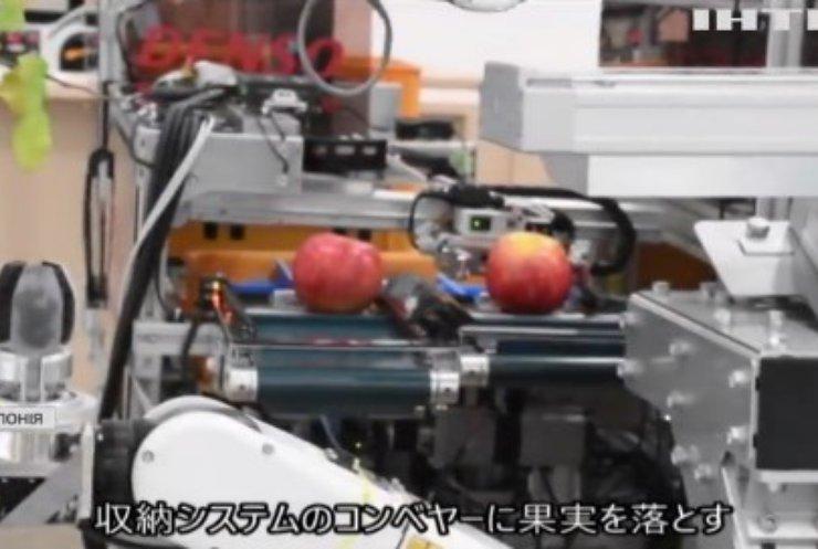 В Японії науковці розробили робота-фермера