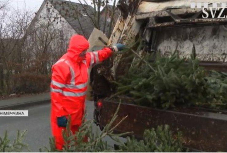 У Німеччина вже розбирають новорічні дерева