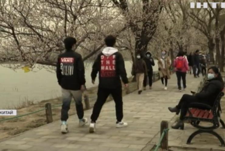 У Пекіні зацвіли персикові дерева