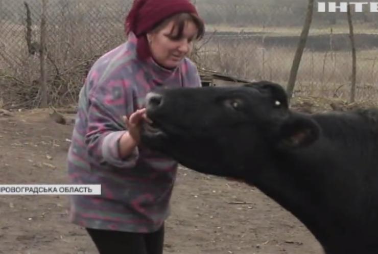 Пляшка молока дорожча за пиво: в Україні зростають ціни на молочну продукцію