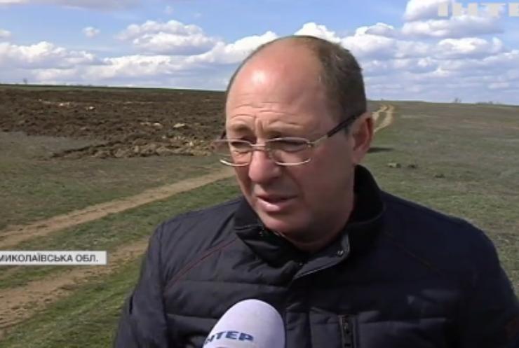 На Миколаївщині земельний конфлікт: пасовища роздали учасникам АТО