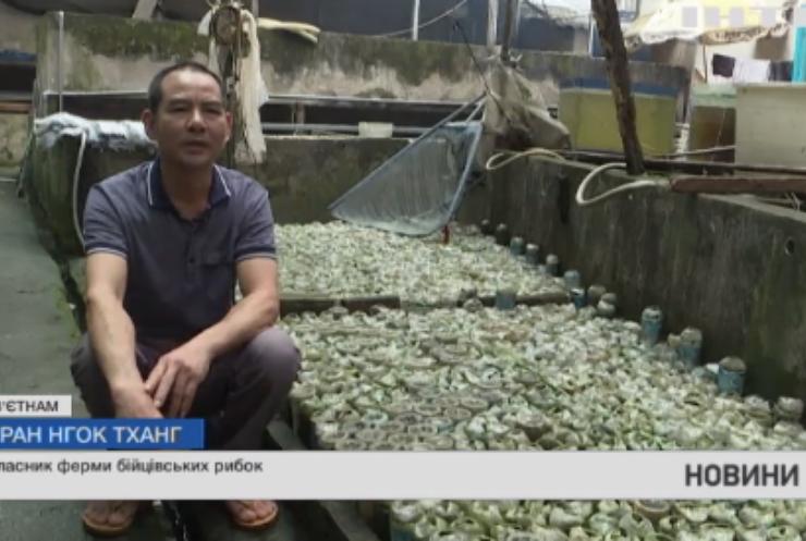 В'єтнамський підприємець розводить рибок у незвичному акваріумі