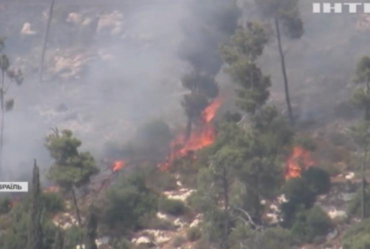 Пожежа в Єрусалимі: вигоріло понад тисячу гектарів лісу