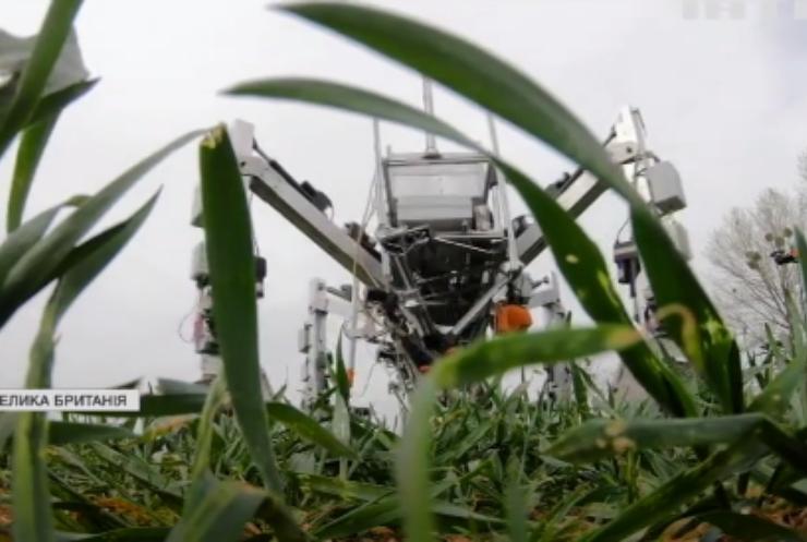 У Британії роботи знешкоджують бур'яни на полях