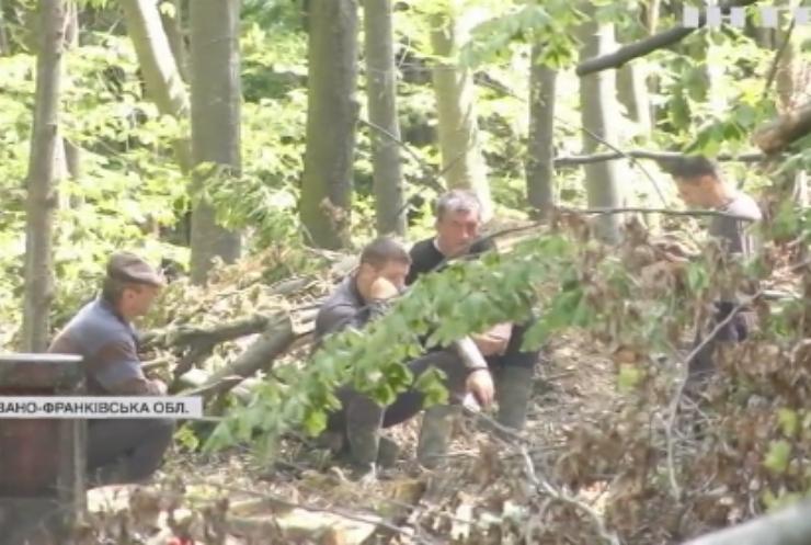 Війна за ліс: Зеленський запропонував посадити мільярд дерев