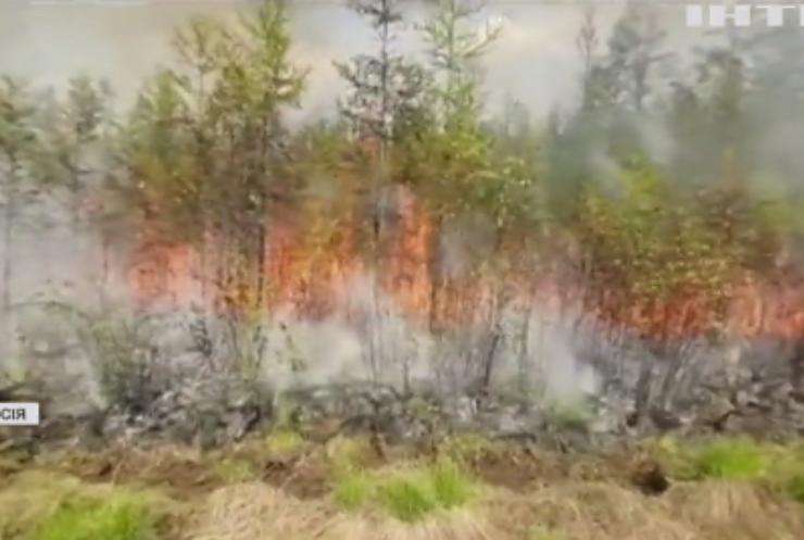 У Росії палають ліса Сибіру