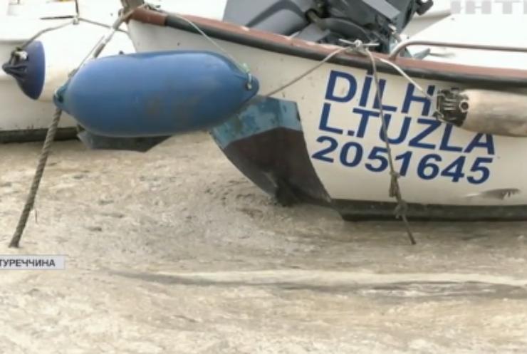 Мармурове море покривається липкою речовиною: слиз вбиває морських жителів