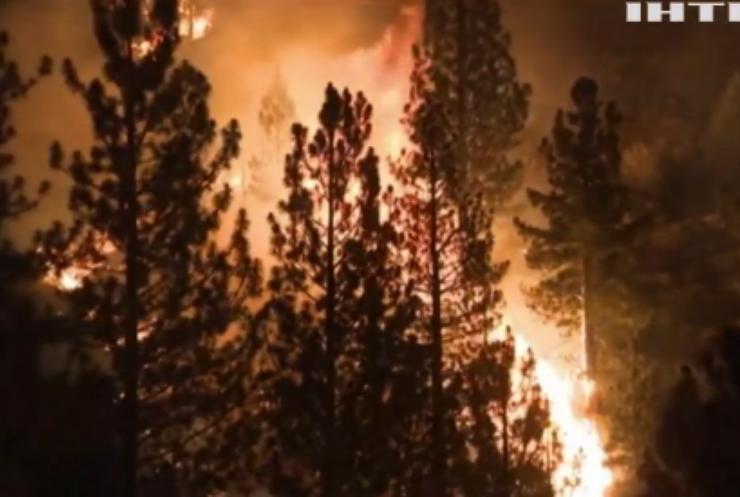 Непогода у світі: США потерпає від лісових пожеж
