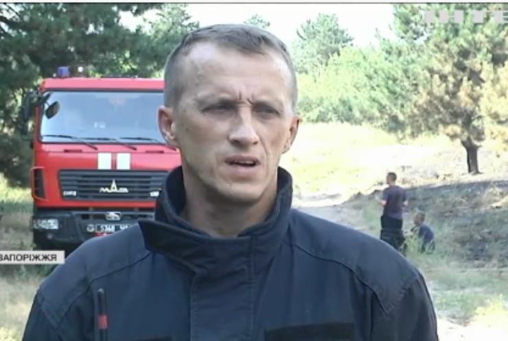 Пожежа на Хортиці: чому рятувальники підозрюють підпал?