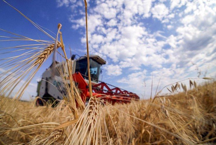 """""""Порада для селян - почекати"""": економіст розповіла, коли в Україні зростуть ціни на землю"""