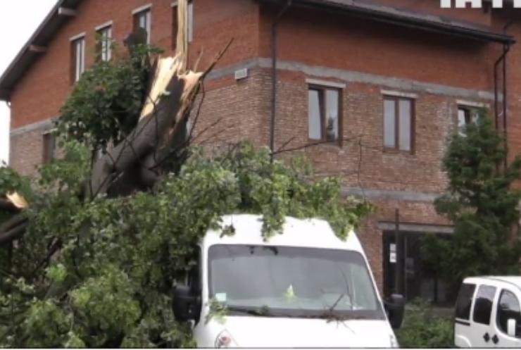 В Україні через негоду знеструмлені 529 населених пунктів