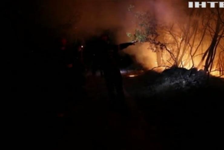 У Греції вирують лісові пожежі: вигоріли десятки будинків