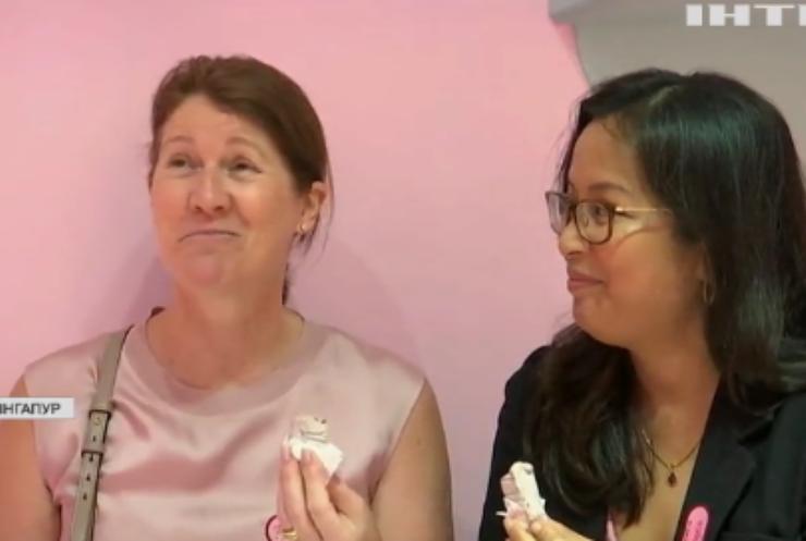 У Сінгапурі відкрили музей морозива