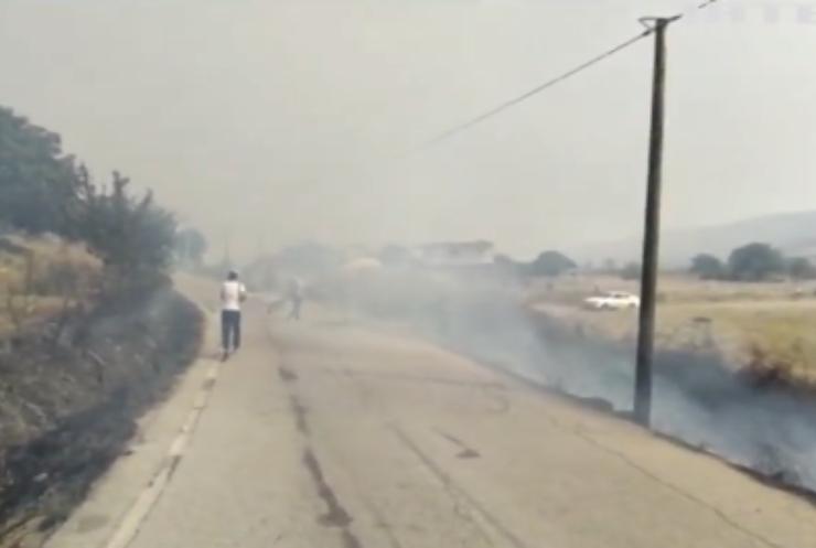 В Албанії спалахнули лісові пожежі