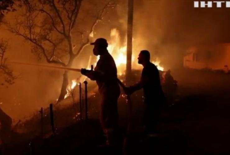 Пекло у Греції: українських фахівців відправлять для гасіння лісових пожеж