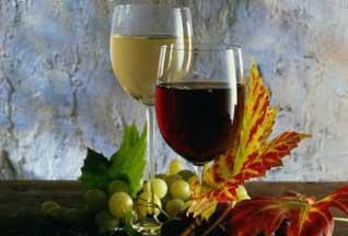 Вино Абхазии заинтересовало деловых людей из Чили