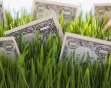 классификация заедитов по признаку обеспеченности включает кредиты