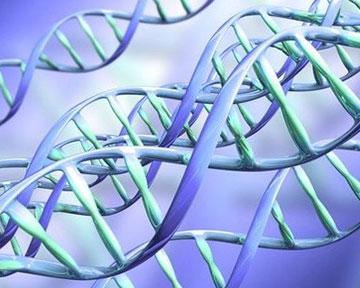 Нанодиафрагма в мембране из оксида алюминия даст исключительные возможности при анализе ДНК