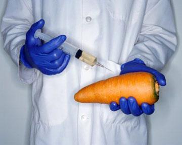 Австралия больше не зона свободная от ГМО