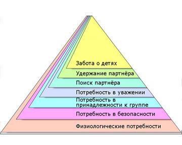 piramida-maslou-potrebnost-v-sekse