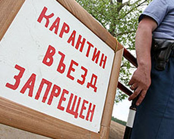новости тимашевска