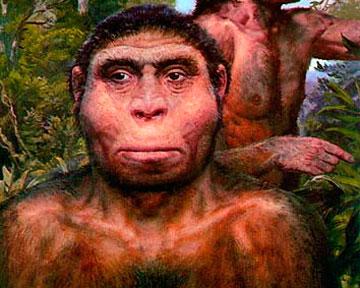 Древние люди скрещивались с другими видами Homo