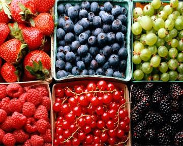 Фруктово-овощная диета препятствует развитию рака