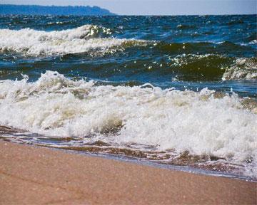 Химическое оружие, затопленное в Балтийском море, приводит к мутациям у рыбы