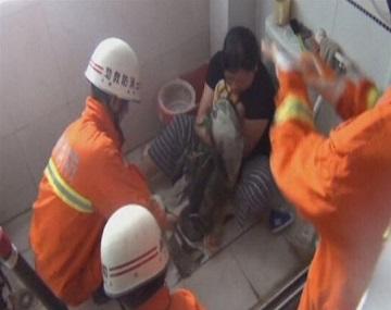 В Китае спасли ребенка, застрявшего в унитазе (видео)