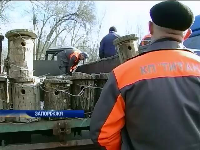 В Запорожском парке развесили полторы сотни скворечников (видео)