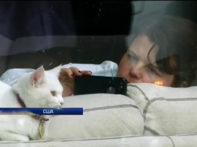В Нью-Йорке открылось первое кафе для котов (видео)