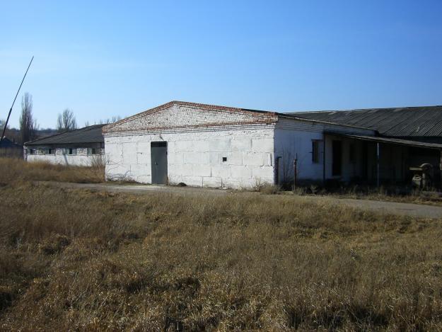 Под Славянском расстреляли фермера на глазах у семьи