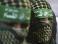 Перемирие между Израилем и ХАМАСом продлено на 72 часа