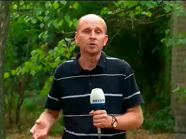 """Корреспонденту """"Подробностей"""" угрожают из-за сюжета о застройке заповедной зоны (видео)"""