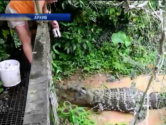 Мир в кадре: в Таиланде пенсионерка покормила собой крокодилов