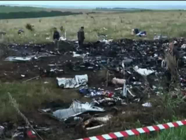 Результати розслiдування катастрофи Боiнга над Украiною оприлюднять влiтку 2015 (видео)