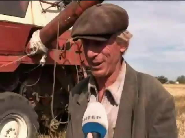 На Донбасі збирають врожай під постійними обстрілам (відео)