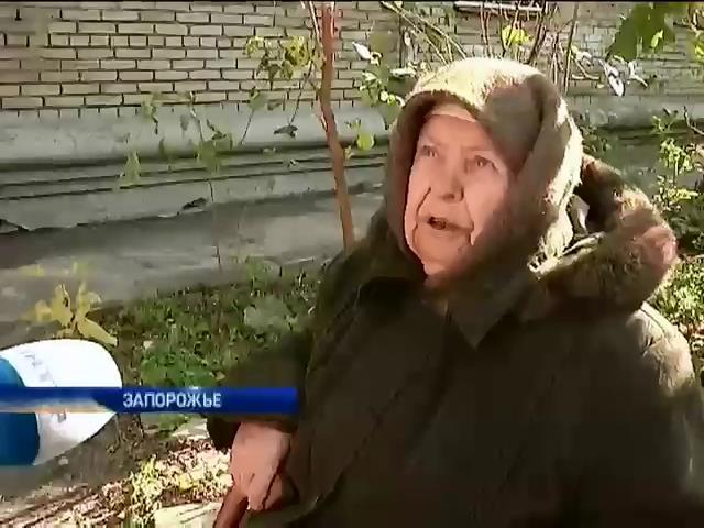 Украинцы спасаются от холода в квартирах теплыми вещами и котами (видео)