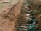 """""""Первый канал"""" выдал фото массовых захоронений в Чечне за """"страшные кадры из Донбасса"""" (фото)"""