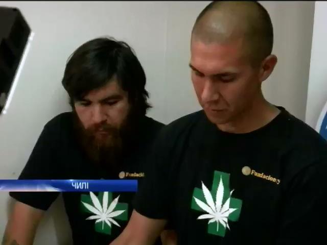 У Чилi засiяли 850 квадратiв плантацiй марихуани для онкохворих (видео)