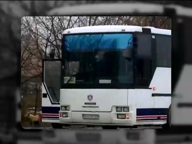 В автобусе Ростов - Донецк обнаружили террористку (видео)