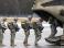 США увеличили количество военных у границ РФ из-за Украины