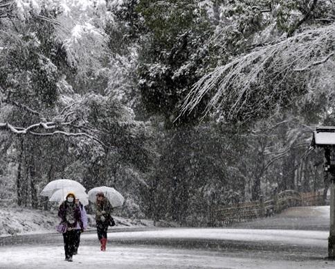 В Японии погибли два человека из-за снегопадов (фото)