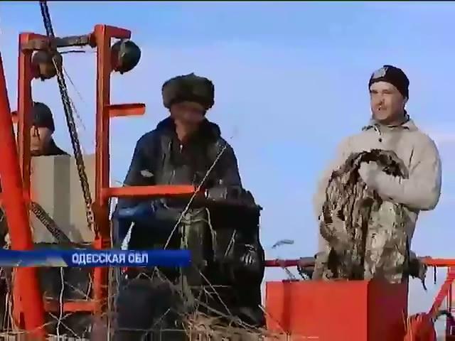 На Одесчине предлагают топить тростником вместо угля (видео)
