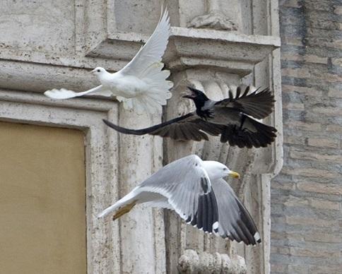 Ватикан заменил голубей мира на воздушные шарики