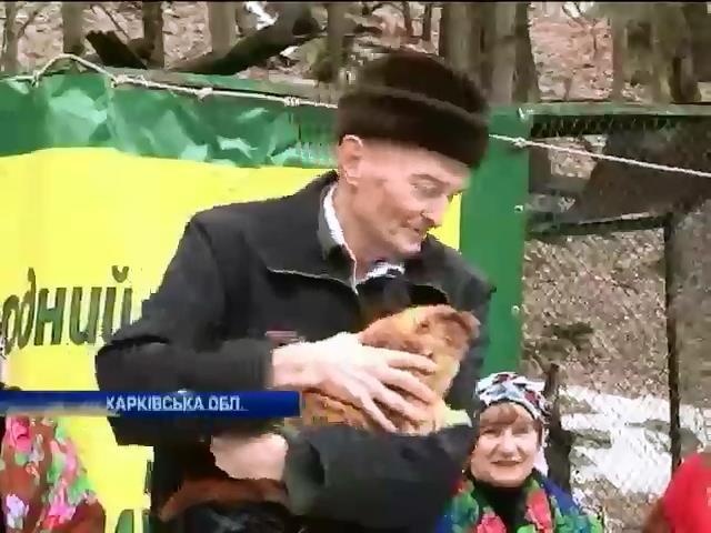Синоптики пiдтвердили прогноз бабака з Харкова (видео)